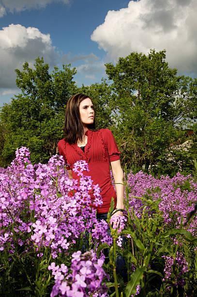 spring purple flower portraits stock photo