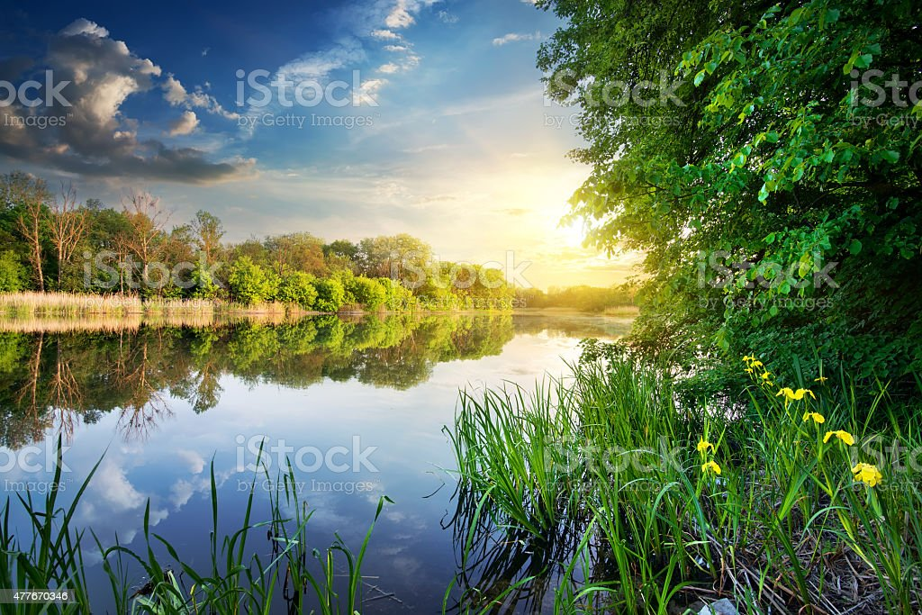 Spring river at sunset stock photo