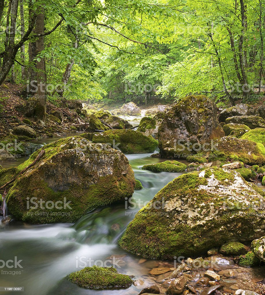 Spring river in canyon. royalty-free stock photo