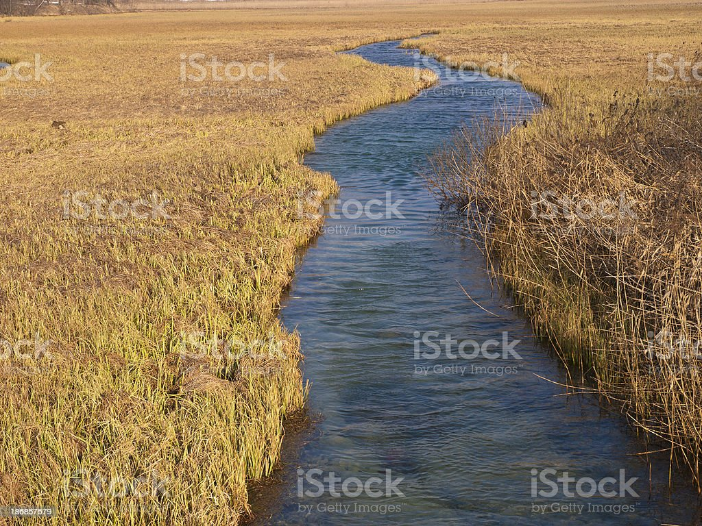 Spring River Sava royalty-free stock photo