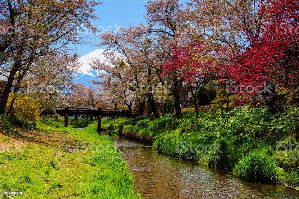 Lente sakura of kersen bloesem in Oshino Hakkai village met Mt. Fuji royalty free stockfoto
