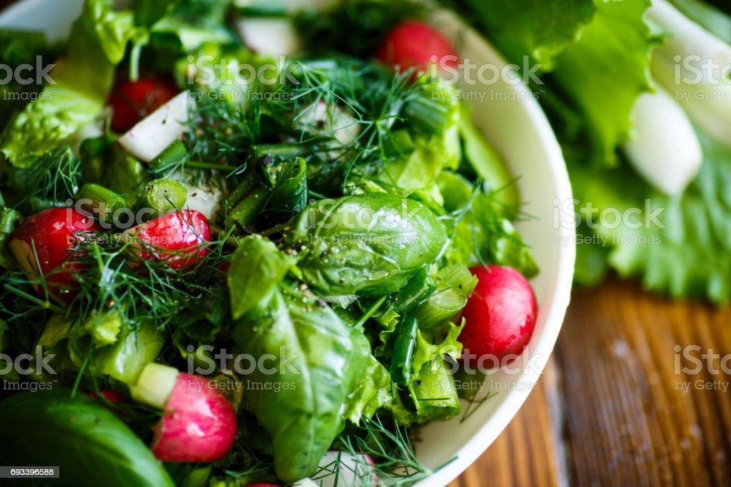 Salade printanière de primeurs, feuilles de laitue, radis et herbes photo libre de droits