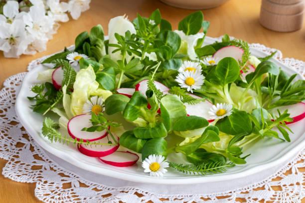 lente salade met walstro, vogelmuur, duizendblad en madeliefjes - madeliefje stockfoto's en -beelden