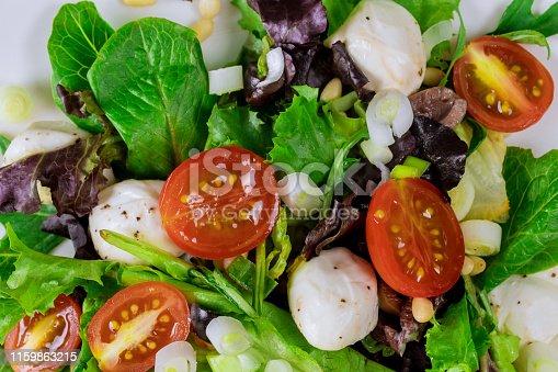 Spring salad with cherry tomato, mozzarella in a plate