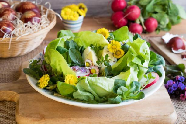lente salade met sla, veldsla, radijs, eieren en wilde eetbare planten - madeliefje stockfoto's en -beelden
