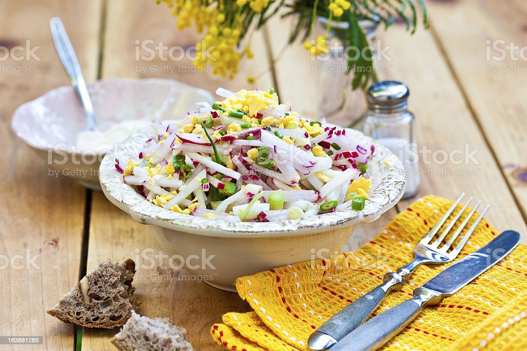 Spring salad with radishes, eggs and green onions. royalty-free stock photo