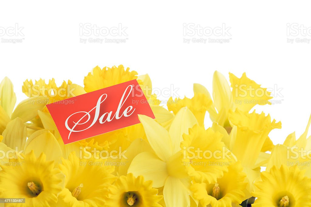 Spring Sale in Progress Hz royalty-free stock photo