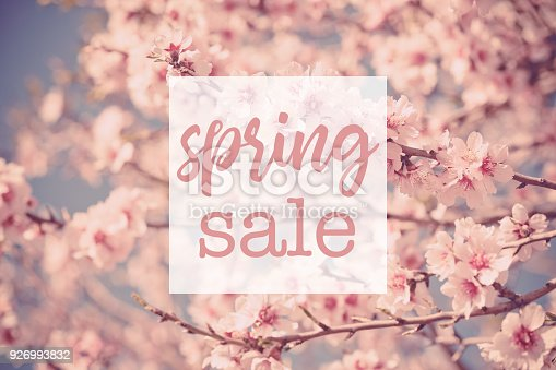 istock Spring Sale Text on Pink Flowers Tree 926993832