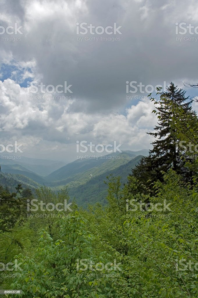 Spring Scenic, Newfound Gap, Great Smoky Mtns NP royalty-free stock photo