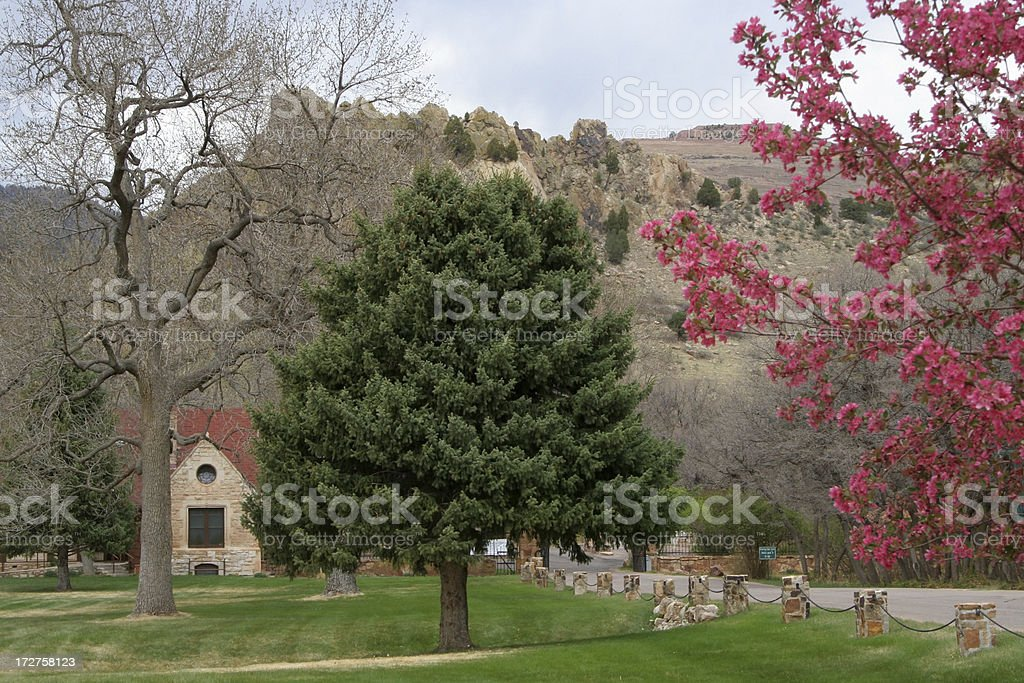 Spring signs in Colorado mountains royalty-free stock photo