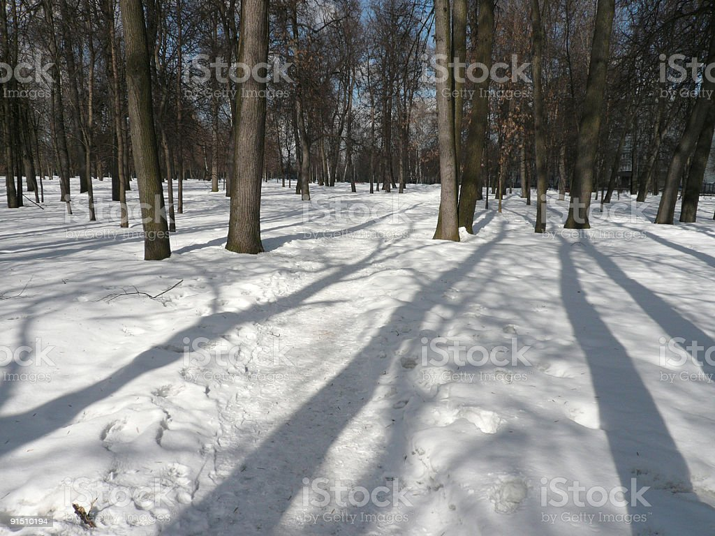 spring snow in city park ad day royalty-free stock photo