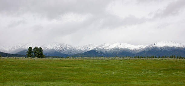 Spring Snow in the Elkhorn Range