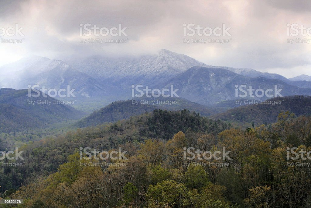 Spring Snowstorm royalty-free stock photo