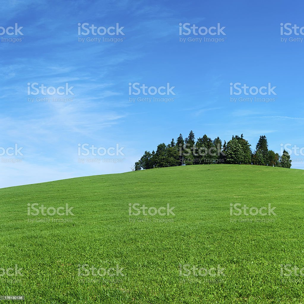 Spring square landscape 64MPix XXXXL meadow, forest, hill, sky royalty-free stock photo