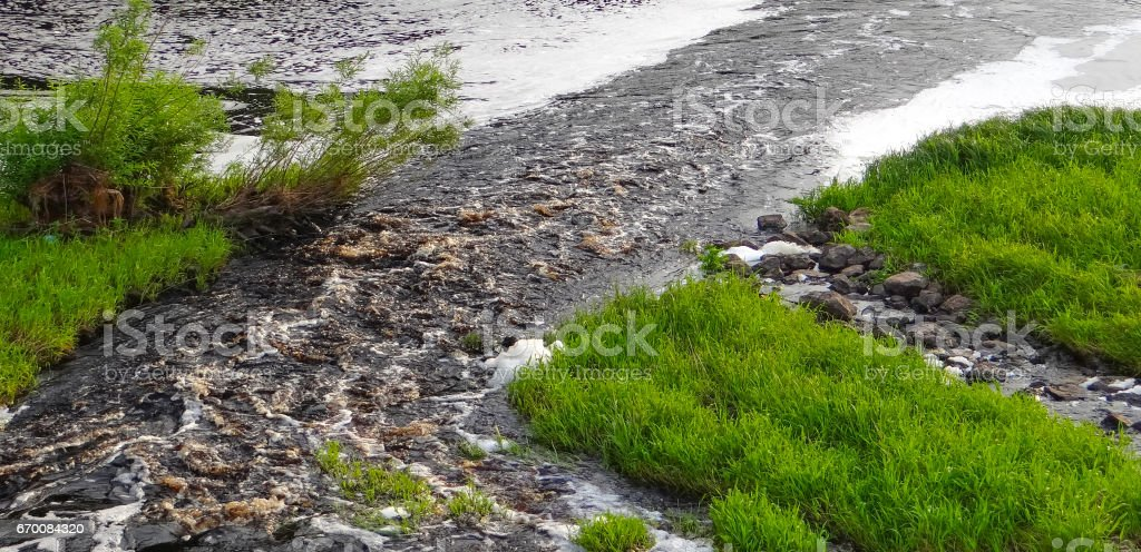 Spring stream in the park. stock photo