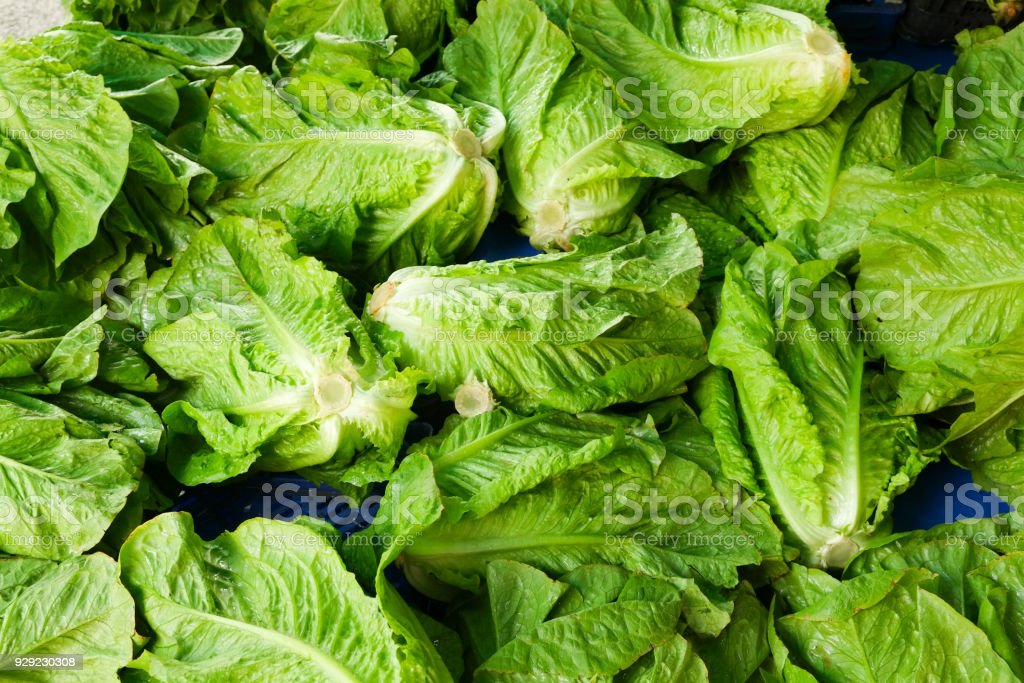 Spring summer detox fruit vegetable diet. Close up of harvest pile. Supermarket stand of clean and shiny vegetables / fruits assortment. Healthy eating concept. stock photo