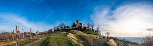 frühlingsanfang in den weinbergen von collio friulano - friaul julisch venetien stock-fotos und bilder