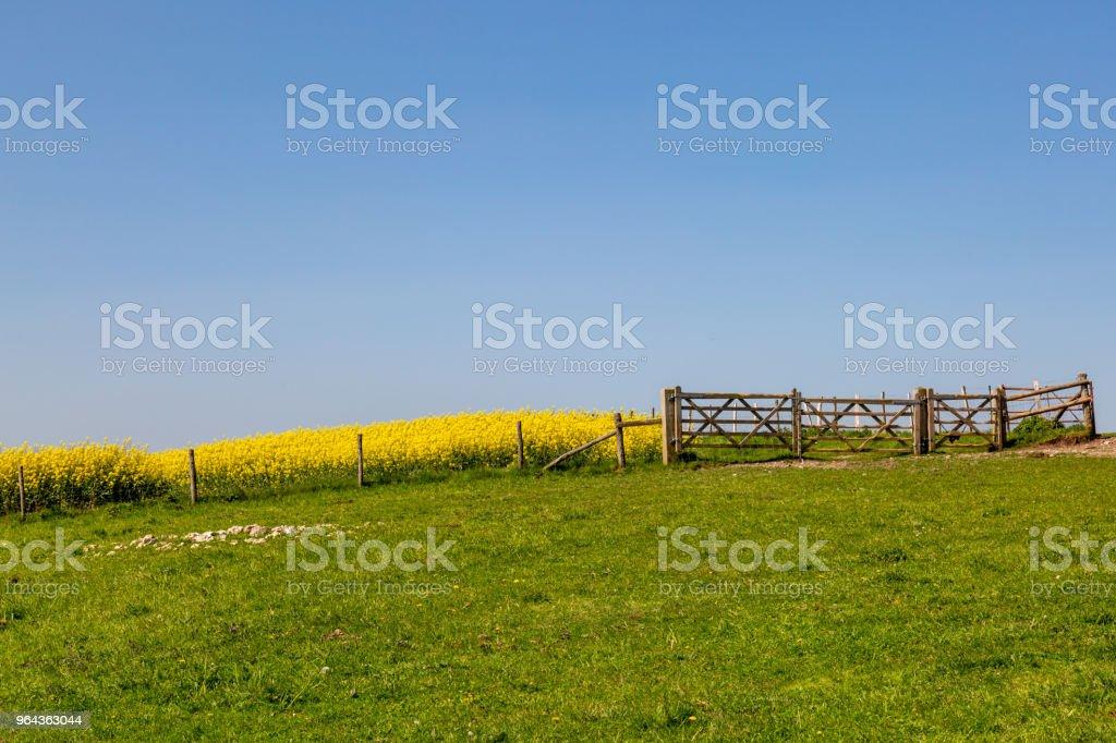 Lente Sussex landschap - Royalty-free Boerderij Stockfoto