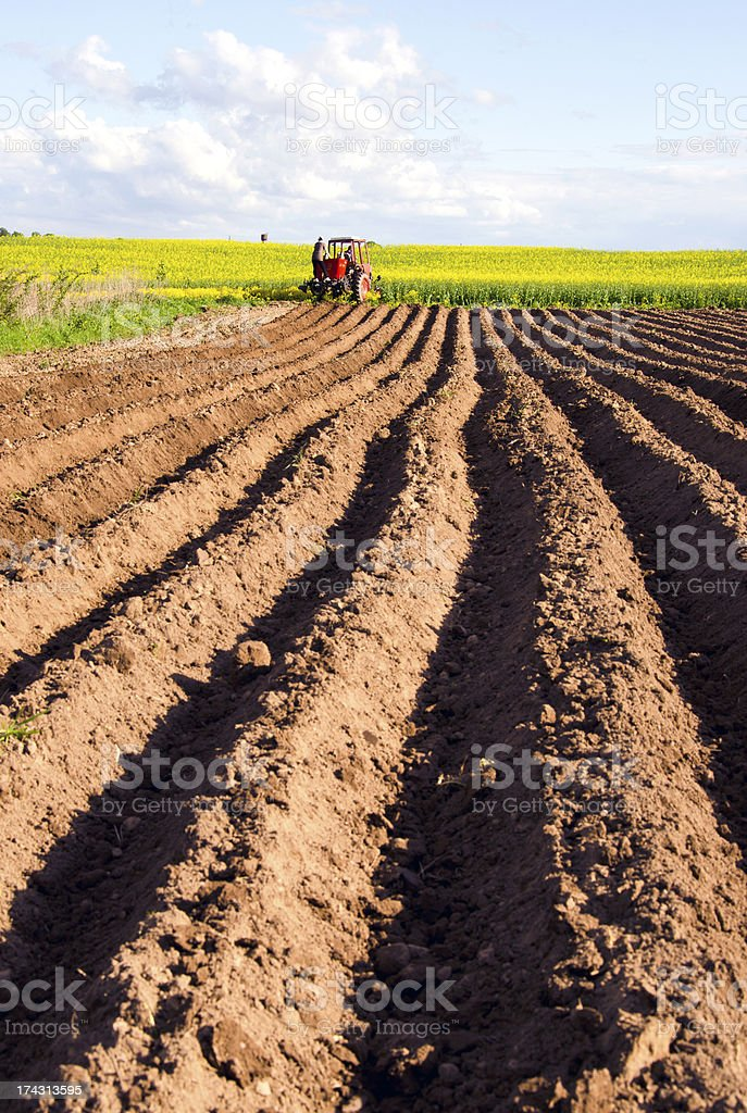 spring tillage in the ground and  tractor royalty-free stock photo