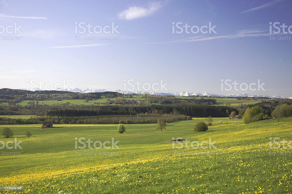 spring time alps royalty-free stock photo