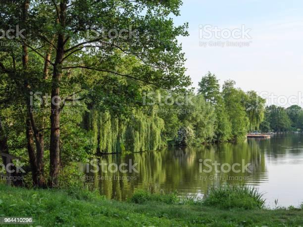Foto de Tempo De Primavera Em Um Lago Na Alemanha e mais fotos de stock de Alemanha