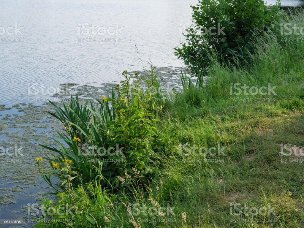 spring time at a lake in germany - Royalty-free Bridge - Built Structure Stock Photo