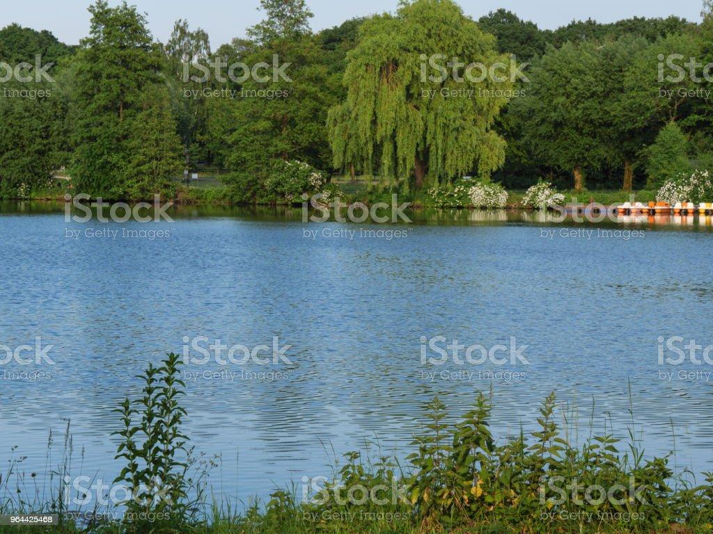 tempo de primavera em um lago na Alemanha - Foto de stock de Alemanha royalty-free