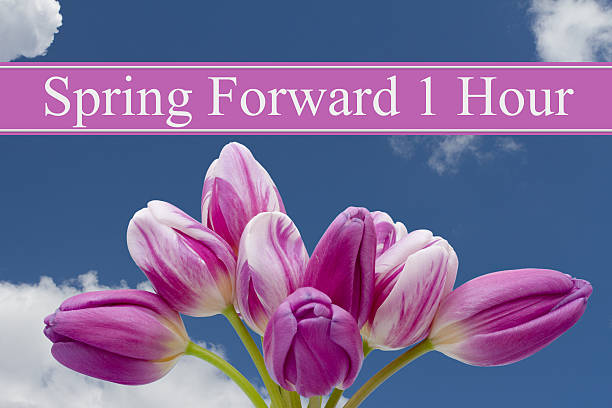 Spring Time Change Spring Time Change, Some tulips with blue background and text Spring Forward 1 Hour daylight savings stock pictures, royalty-free photos & images