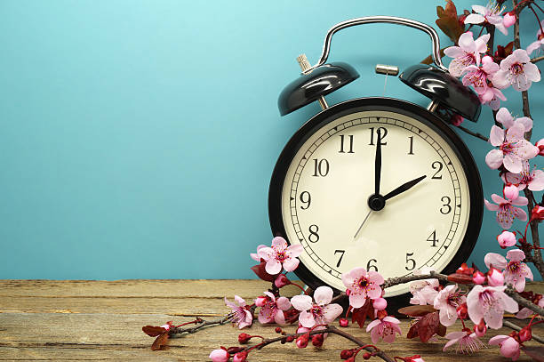 Spring Time Change Pink Blossoms and an Alarm Clock on an Old Wooden Table daylight savings stock pictures, royalty-free photos & images