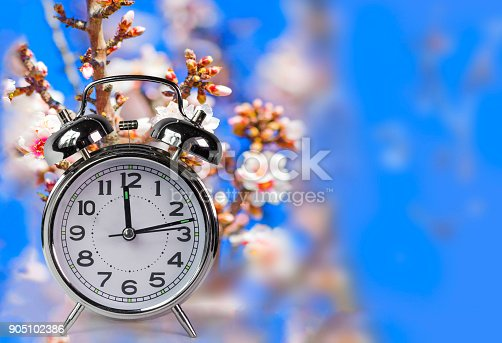 905623256 istock photo spring time clock flowers nature space for your text , background 905102386