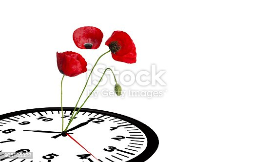 905623256 istock photo spring time clock flowers nature space for your text , background 905105322