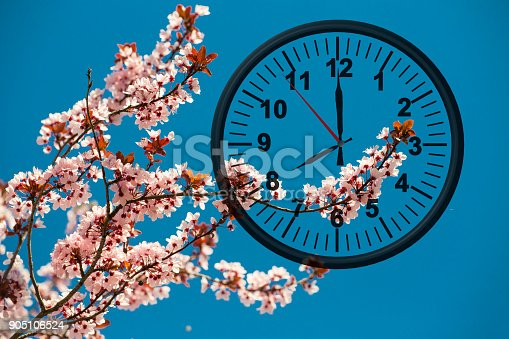 905623256 istock photo spring time clock flowers nature space for your text , background 905106524
