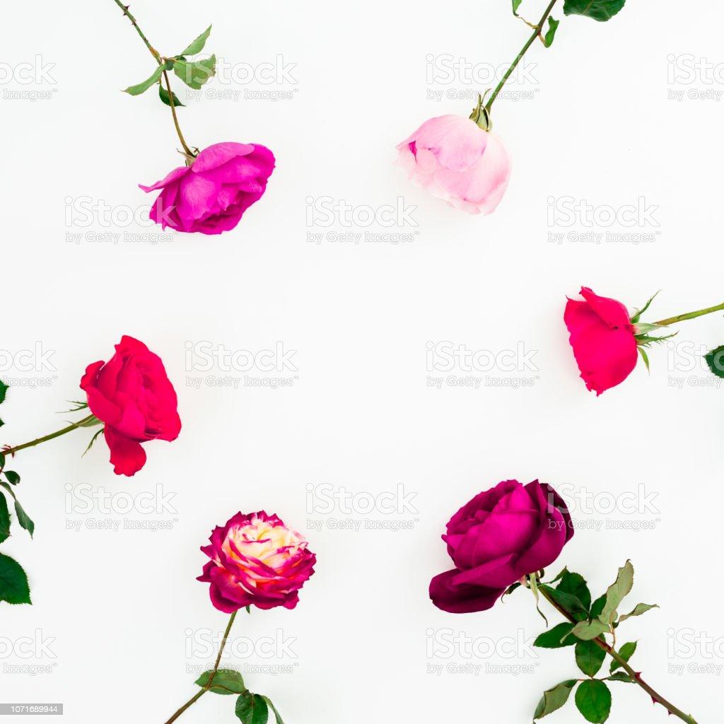 Spring Time Frame Background Floral Composition Of Pastel Pink