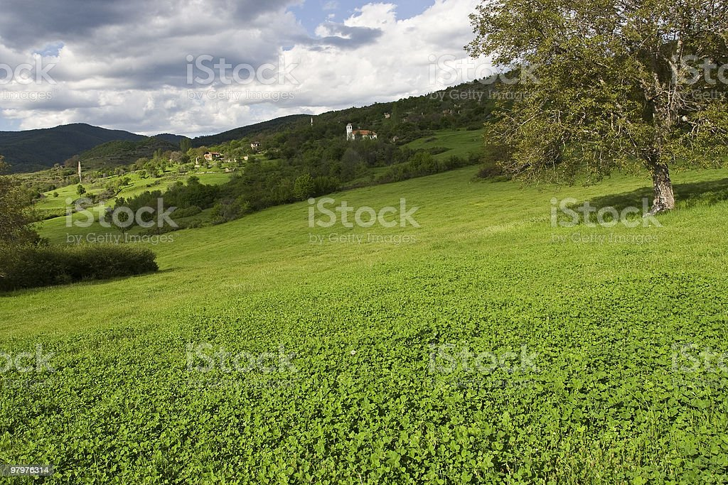 Spring time royalty-free stock photo
