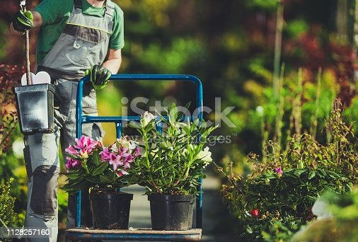 Spring Time Plants Shopping. Caucasian Gardener with Cart in the Garden Department Store.