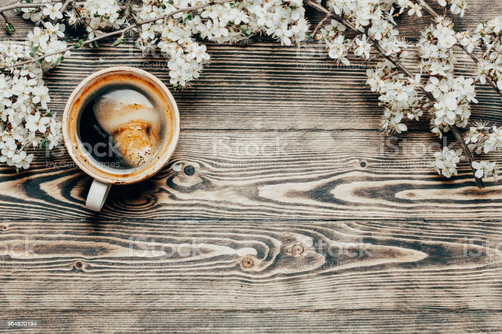 Spring top view wooden background with coffee and blossoming tre royalty-free stock photo