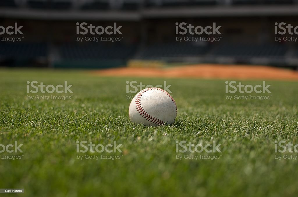 Spring Training stock photo