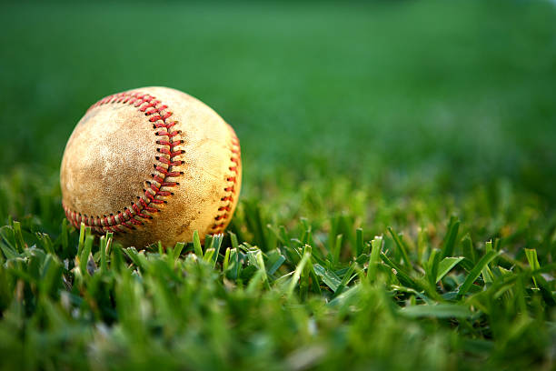 spring training - spring training stock photos and pictures