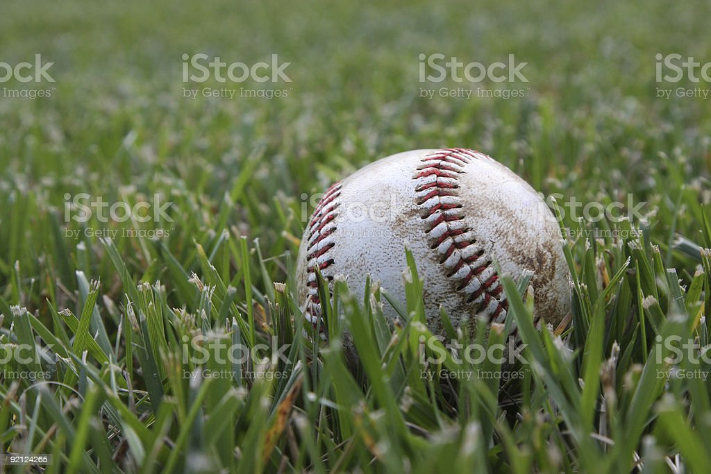 Spring Training royalty-free stock photo