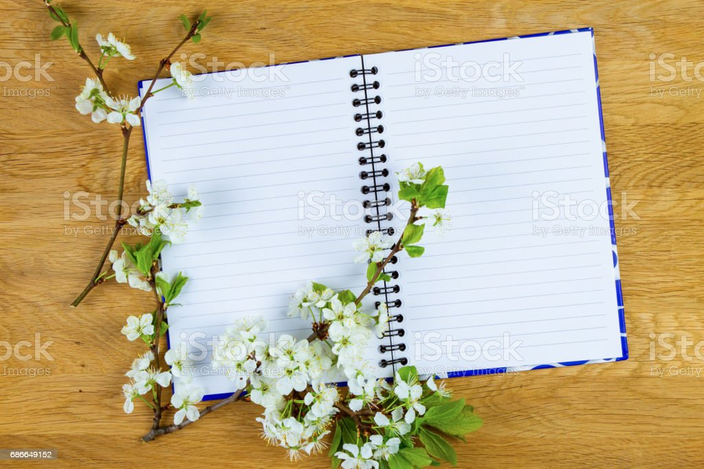 Spring tree blossom and empty notebook on wooden background. Copy space. Top view. royalty-free stock photo