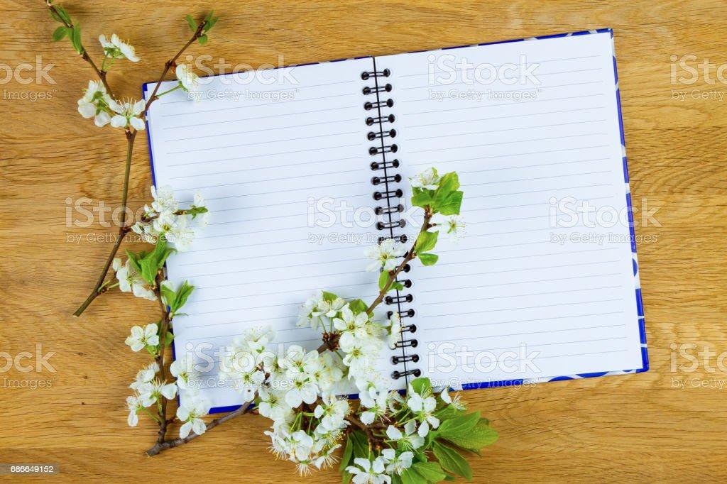 Fleur d'arbre de printemps et vide portable sur fond en bois. Copiez l'espace. Vue de dessus. photo libre de droits