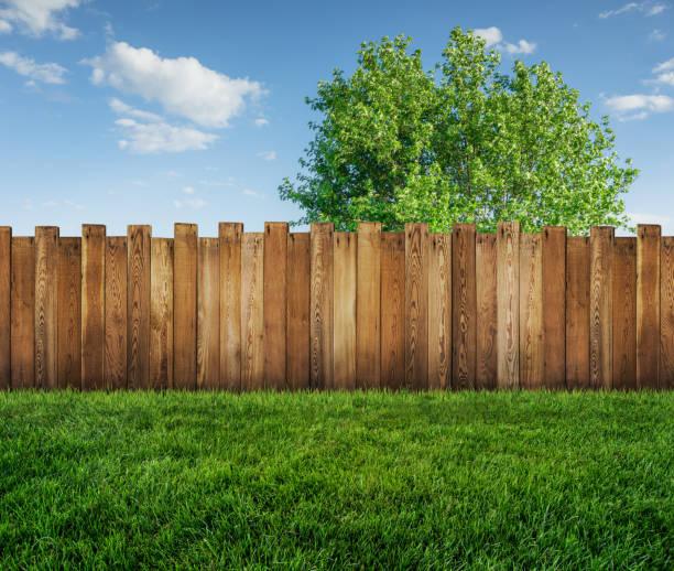 spring tree in backyard and wooden garden fence - staccionata foto e immagini stock