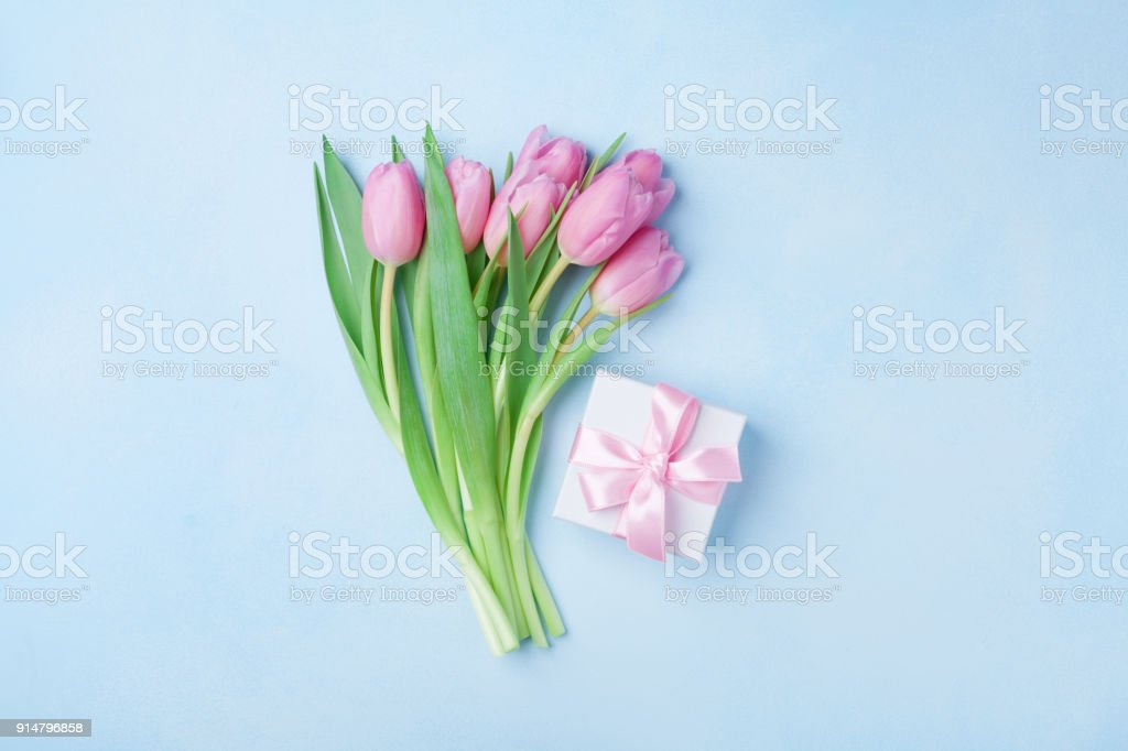 Spring tulip flowers and gift box on blue pastel table top view....