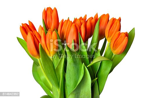 istock Spring tulips bouquet 514642352