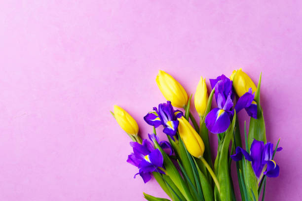spring, Valentine, Mother's day flower composition stock photo