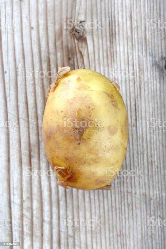 spring vegetables, fresh, potato royalty-free stock photo