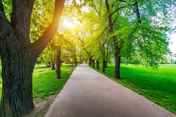 Blick auf den Letna Park, Prag, Tschechien. Frühling in Prag (Praha), schöner Letna-Park (Letenske sady) im Sonnenlicht, sonnige Landschaft, beliebtes Touristenziel, Prag, Tschechien – Foto