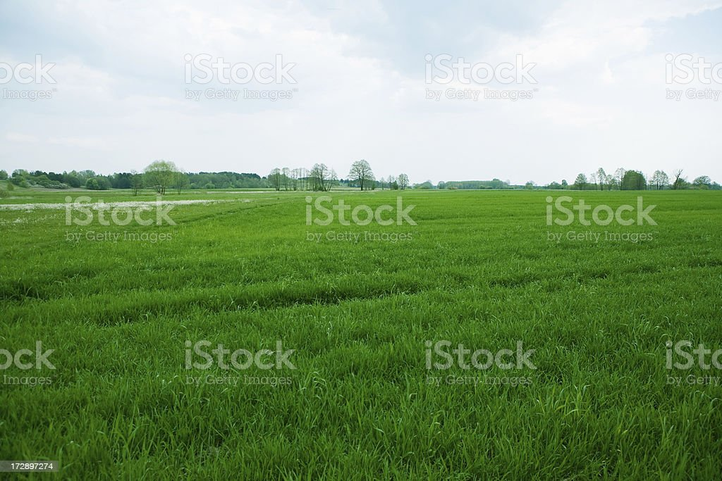 spring village landscape royalty-free stock photo