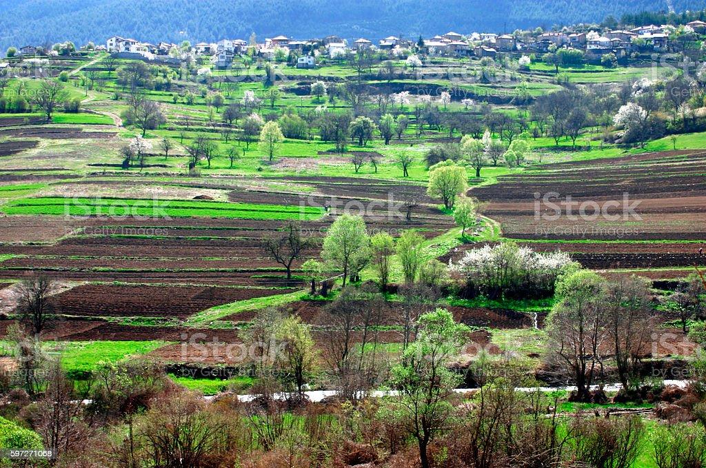 Spring village Lizenzfreies stock-foto