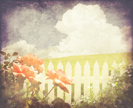 Spring vintage background of red roses and white picket fence